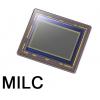 MILC (88)